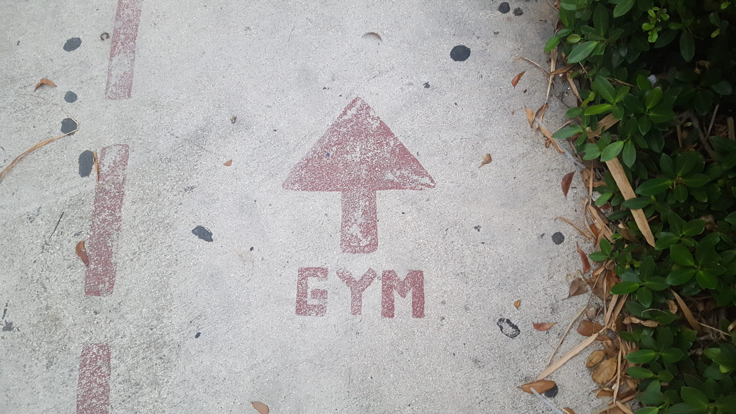 5 Covid Protocols to Maintain When You Hit the Gym This Unlock Phase